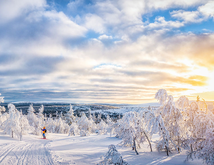 Cross-country skiing in winter wonderland in Scandinavia at suns