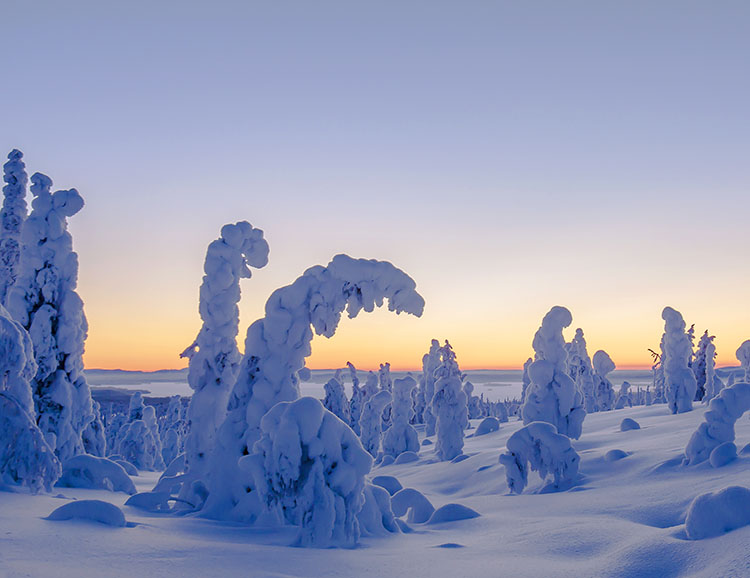 Wintry landscape in Finnish Lapland